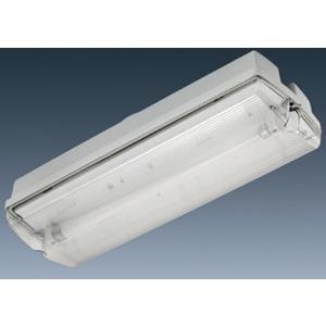 Starlite WEATHER-PROOF EMERGENCY LIGHT SFE-IP65