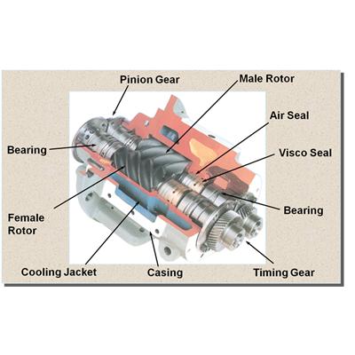 Cấu trúc đầu nén máy không dầu