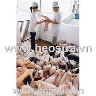 Ngành chăn nuôi trước ngưỡng cửa WTO