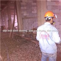 Phòng mối công trình xây dựng