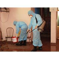Tự ý phun thuốc diệt muỗi làm tăng dịch bệnh
