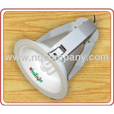 Đèn âm trần nano NSD45