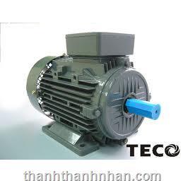 MOTOR TECO (CHÂN ĐẾ - 6P - 960 RPM)