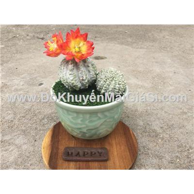 Chậu xương rồng tròn hoa đỏ mini bằng đất sét Handmade - Kt: (15 x 8 x 8) cm