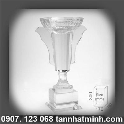 Cup pha le_TNM 202