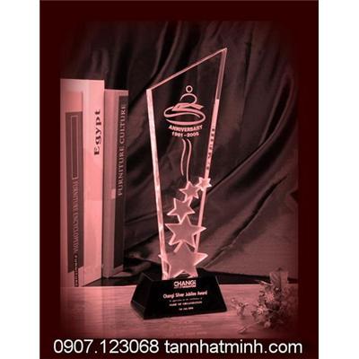 Kỷ niệm chương pha lê 2012_1