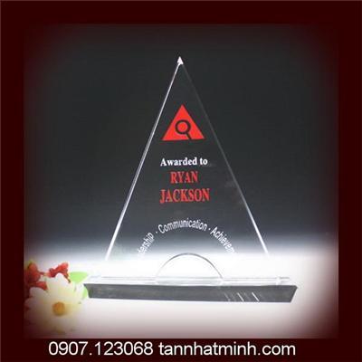 Kỷ niệm chương pha lê 2012_9