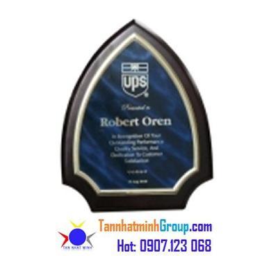Kỷ niệm chương gỗ đồng VIP 15