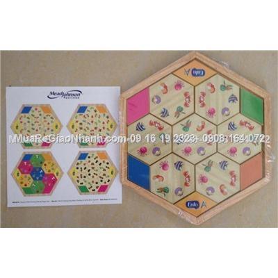 Bộ xếp hình Domino lục giác Enfa
