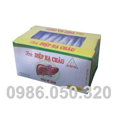 Diệp hạ châu ( túi lọc) - Bảo vệ gan, hỗ trợ điều trị viêm gan B
